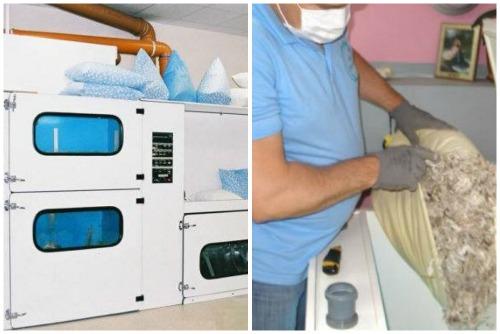Как в домашних условиях почистить перо в подушках