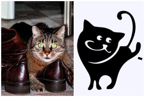 кот метит в ботинки