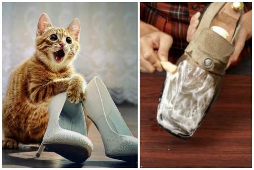 душок от обуви