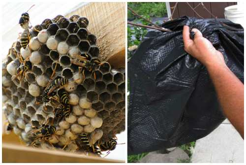 пакет для гнезда