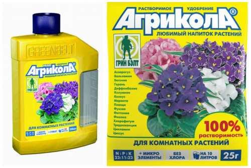 Как сделать удобрение для комнатных цветов