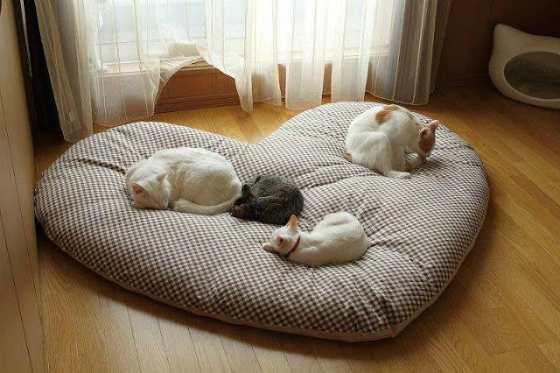 Кошачья постель в форме сердечка