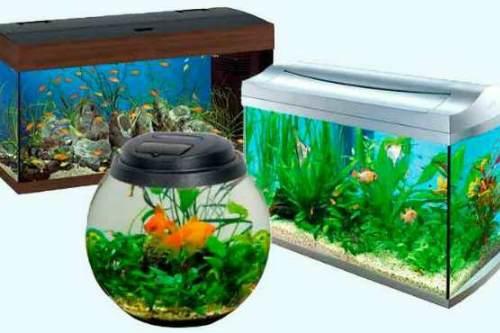 Разные аквариумы