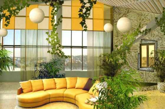 Вьющиеся растения в интерьере помещения