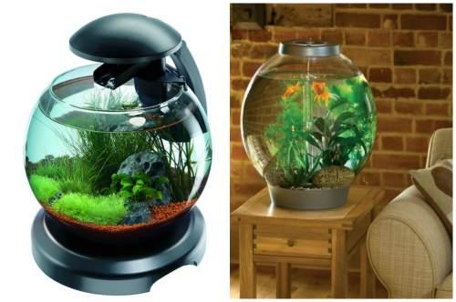 Круглый аквариум