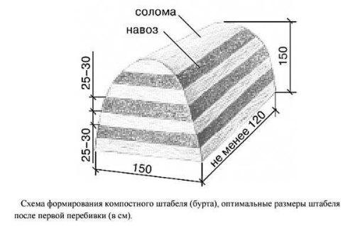 схема формирования компоста