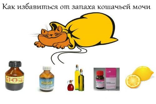 средства от запаха кота