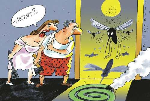 война с насекомыми