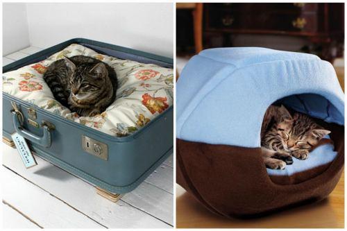 Спальное место для кошки в чемодане и домике с крышей