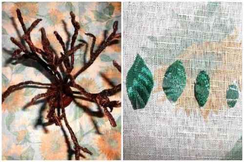 Фиксация яблоньки и зеленые листочки
