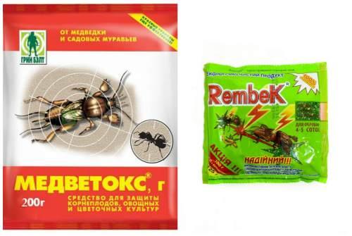 Медветокс и Rembek