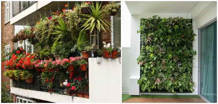 Горизонтальное и вертикальное озеленение