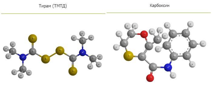 Тирам и карбоксин